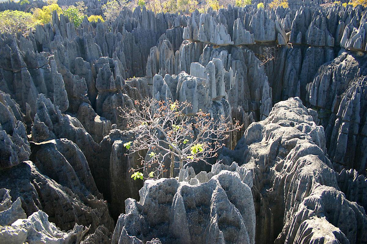 Voyage dans l'Océan Indien : découvrir l'île de Madagascar